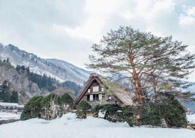 Chalet tra la neve