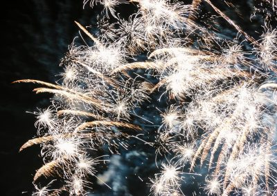 Fuochi d'artificio eleganti